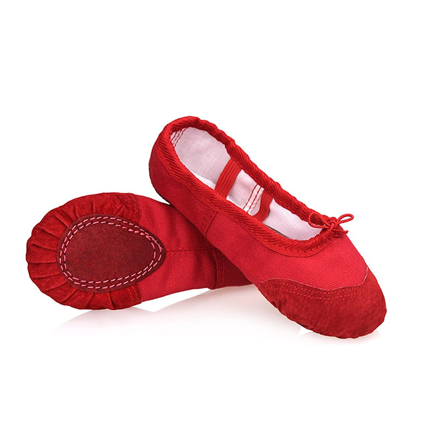 Amazon.com | DoGeek Ballerina Shoes Ballet Shoes Mocassins Dance Classical Dance Shoes Ballet Shoes | Dance