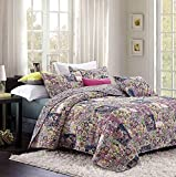 Duke Imports DQ555K Feathers 3Piece Feathers Quilt Set,King