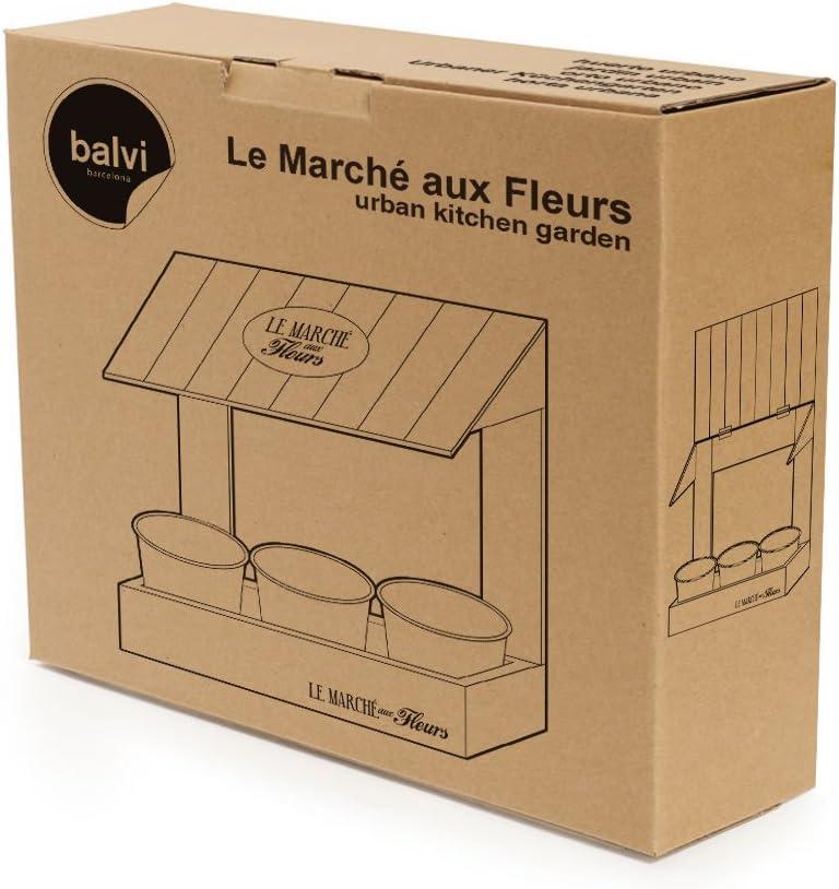 Balvi - Le Marché aux Fleurs huerto Urbano para Hierbas aromáticas ...