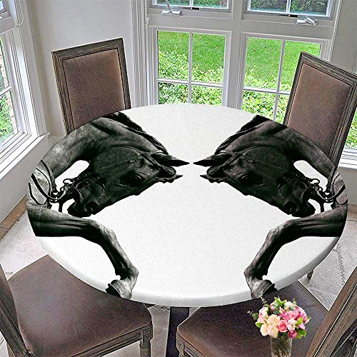 Mikihome Round Premium Table Cloth Twin Contrast Horse Heads Statue Image Vintage Style Art Antigue War Theme Print Perfect for Indoor, Outdoor 40