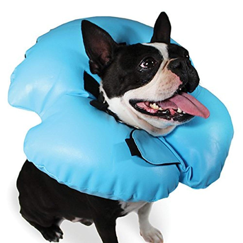 KVP Air-o Mascota Hinchable recuperación Collar: Amazon.es ...