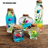 Water Beads kits for vases filler kids non toxic art crafts toy rainbow mix jelly ball grow in water Gel Pearls with Wish Bottle Seashells Crystal Slime Putty Super for Candle Making Home Decoration