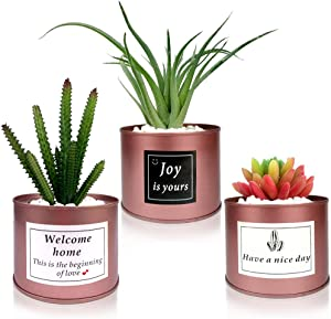 Artificial Plant Cactus Succulent in Rose Gold Pot Fake Houseplants for Bedroom Faux Cactus Metal Cans for Home Office Café Bookshelf Wedding Décor (Rose)