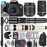 Canon EOS Rebel 800D / T7i Camera + 18-55mm IS STM Lens + 650-1300mm Telephoto Lens + Canon 55-250mm IS Telephoto Lens + 500mm f/8.0 Telephoto Lens + 2yr Extended Warranty - International Version