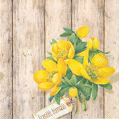Celebrate the Home Floral 3-Ply Paper Luncheon Napkins, Eranthis Hyemalis, 20-Count