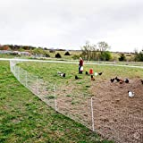 """Premier PoultryNet Electric Fence, 48""""H x 164L, Double Spiked, White - Premier Top Seller"""
