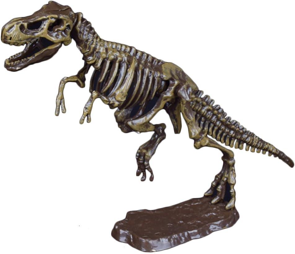 Qiuxiaoaa Dinosauro fossile Scavo archeologico Giocattolo Pietre preziose in Terracotta Uomini e Donne Giurassico Fatti a Mano Fai da Te Assemblato Scheletro Tyrannosaurus Rex