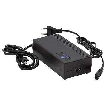 Phylion Joycube SF-06S / RC1701-48V 2A - Cargador de batería ...