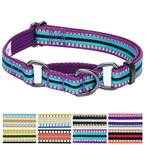 Blueberry Pet 8 Colors 3M Reflective Multi-colored Stripe Safety Training Martingale Dog Collar, Violet and Celeste, Small, Heavy Duty Adjustable Collars for Dogs
