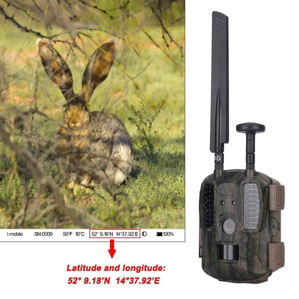 4G Wildlife Hunting Camera GPS Wireless 4G FDD LTE Remote APP Control Camo Hunting Game Trail Camera Wildlife Photo Trap HD