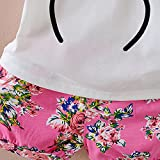 Baby Girl Clothes Outfits Short Sets 2 Pieces