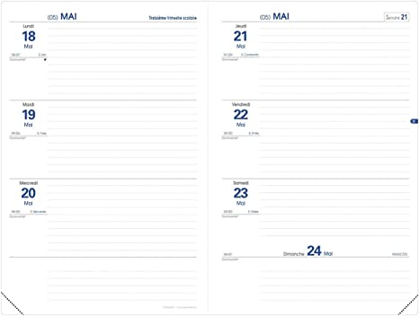 Quo Vadis Ben TEXTHEBDO Agenda scolaire Semainier 16x24cm Art du jour Ann/ée 2020-2021