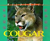 Cougar, Jalma Barrett, 1567112587