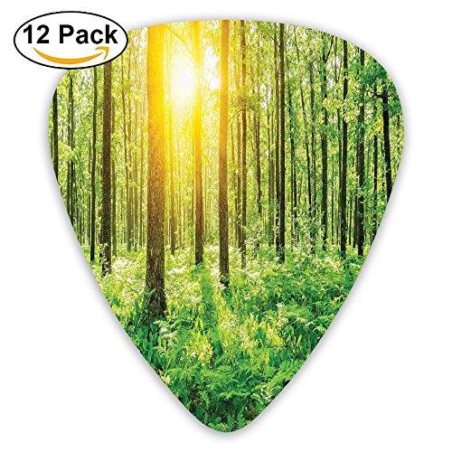 Newfood Ss Forest Springtime Freshness Foliage Sunbeams Sunrise Nature View Scene Guitar Picks 12/Pack Set