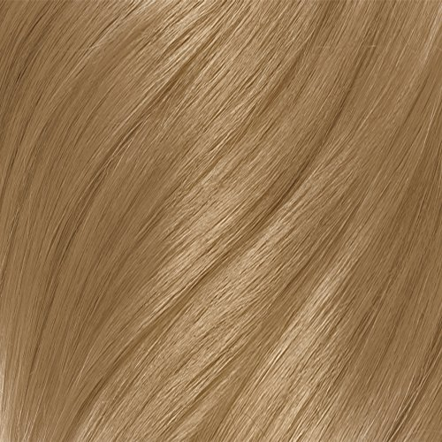 Clairol Balsam Hair Color 12 Natural Black 1 Kit