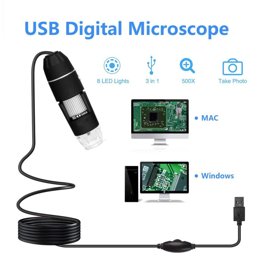 Togames-ES Microscopio USB 0.3MP 500X 1000X port/átil Endoscopio Lupa Zoom de la c/ámara con 8 LED de luz electr/ónicos Microscopios Digitales