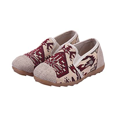 Tianrui Crown Boy's and Girl's Embroidery Canvas Sneaker Loafer Shoes Kid's Cute Flat Shoe