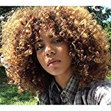 AisiBeauty Short Curly Wigs for Black Women Synthetic Hair Blonde and Brown Afro Wig with a Free Cap