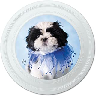 Graphique et Plus Shih Tzu Chiot Jester Bleu Fantaisie 22,9 cm Flying Disc 9 cm Flying Disc Graphics and More