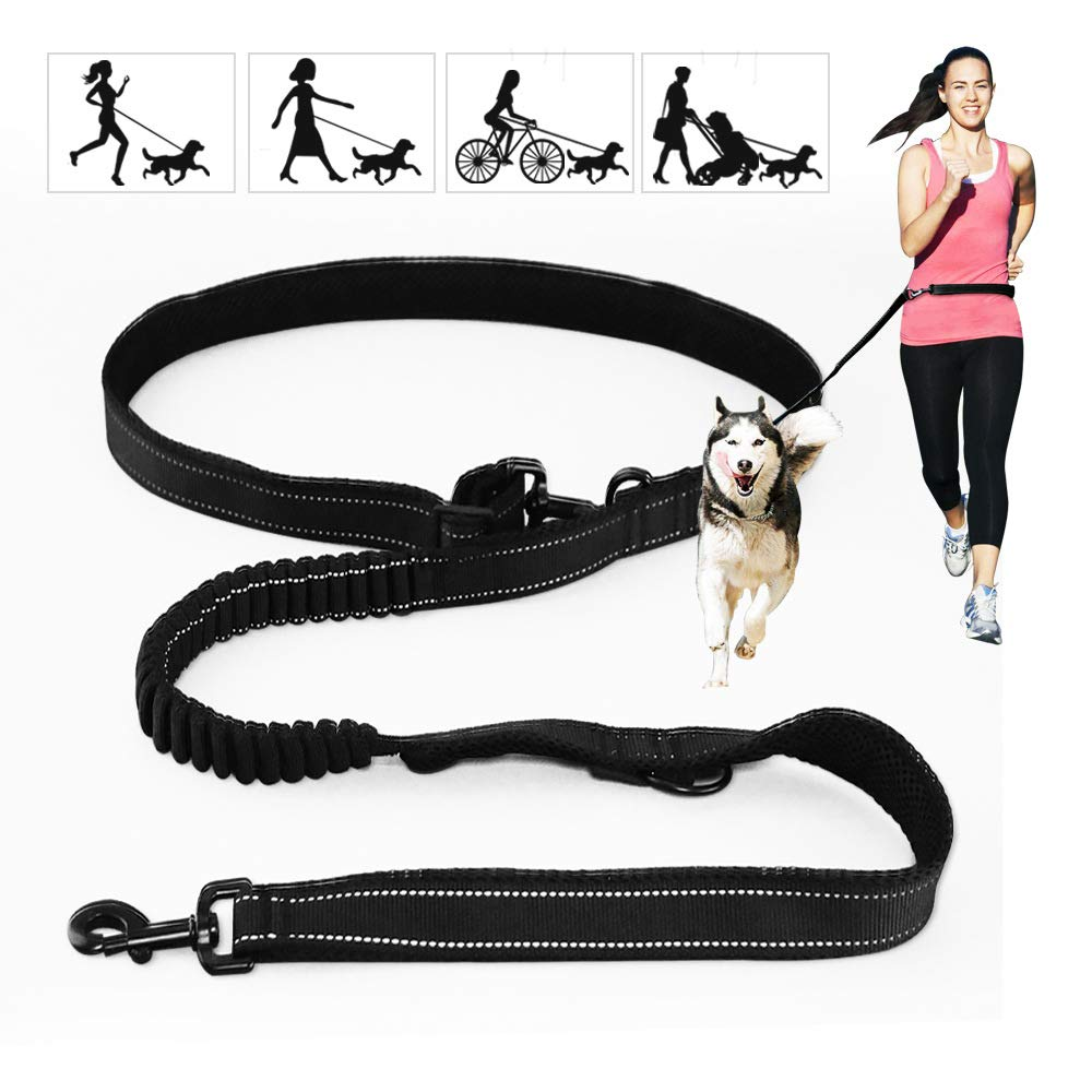 Strong Dog Leash,Dog Leash Pet Rope Leash,Comfortable Padded Handle with Reflective Nylon Training Strap - Perfect Leash for Medium to Large Dogs (6.5 Ft),L