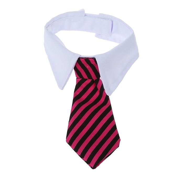 SODIAL(R) Corbata de lazo ajustable para el collar del gato del ...