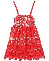 Girl Lace Dress,HotMoon Vestidos Flower Wedding Princess Party Dresses,Beautiful Skirt