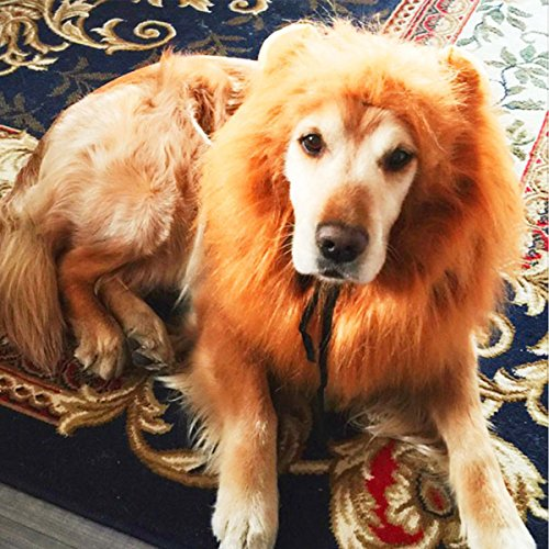 Dog-Wig-Lion-Mane-Wig-for-Dog-Adjustable-Pet-Wigs-Dog-Costume-Washable-Lion-Hair-Large-Dog-Clothes-Dog-Headwear