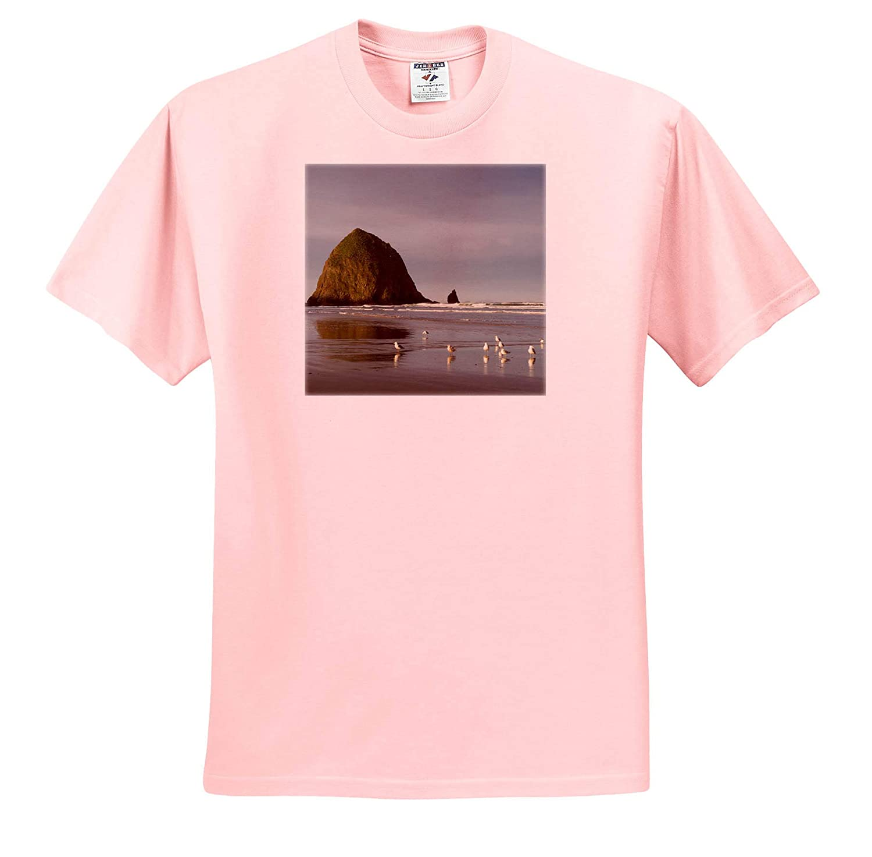 Haystack Rock on Cannon Beach Oregon ts/_314980 3dRose Danita Delimont Adult T-Shirt XL Oregon