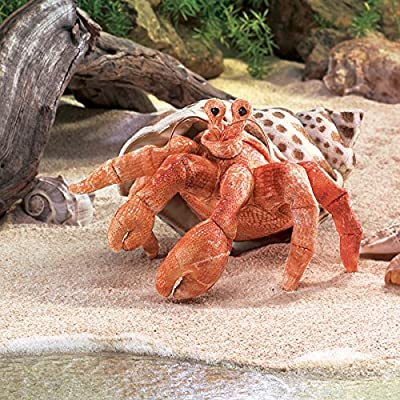 Folkmanis Hermit Crab Hand Puppet: Toys & Games