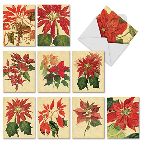 Botanical Card - M9628XSG Poinsettia Season: 10 Assorted Christmas Note Cards Featuring Vintage Inspired Botanical Prints of Seasonal Poinsettias, w/White Envelopes.