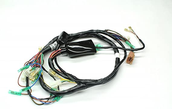 [SCHEMATICS_49CH]  Amazon.com: Z1 Parts Inc. z1p-0111 Main wiring Harness for Kawasaki KZ1000:  Automotive | Kz1000 Wiring Harness |  | Amazon.com