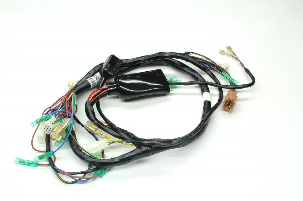 Cool Amazon Com Z1 Parts Inc Z1P 0111 Main Wiring Harness For Kawasaki Wiring Digital Resources Bemuashebarightsorg