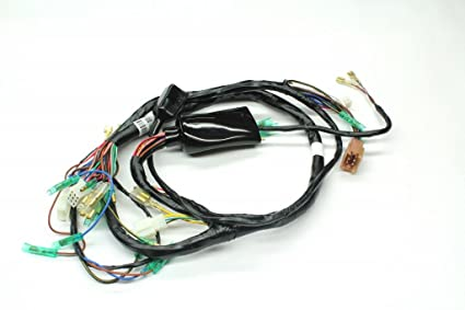 Amazing Amazon Com Z1 Parts Inc Z1P 0111 Main Wiring Harness For Kawasaki Wiring Digital Resources Bemuashebarightsorg