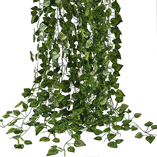 Silk Plants Jungle (HOGADO Fake Vines, 79 FT Artificial Hanging Plants Silk Golden Devil's Ivy Leaves for Reptiles Wall Livingroom Outdoor Party Festival Decor Pack of 12)