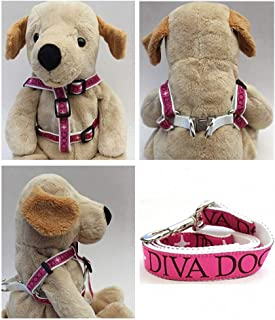 "product image for Diva-Dog 'Monogram' Custom 5/8"" Wide Dog Step-in Harness with Plain or Engraved Buckle, Matching Leash Available - Teacup, XS/S"