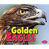 Golden Eagles (Birds of Prey)