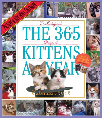 365 Kittens-a-Year 2012 Calendar (Picture-A-Day Wall (Happy Halloween Book Lovers)