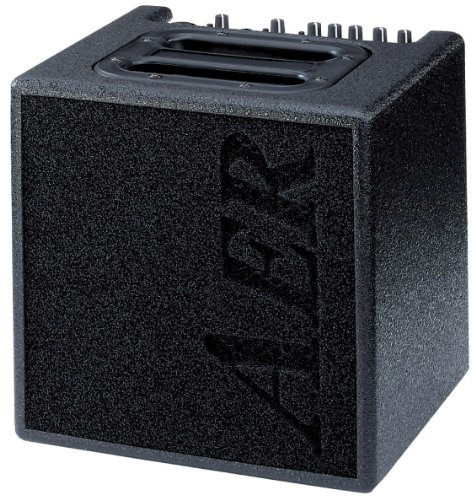 AER Alpha 40W 1x8 Acoustic Guitar Combo Amp Black by AER