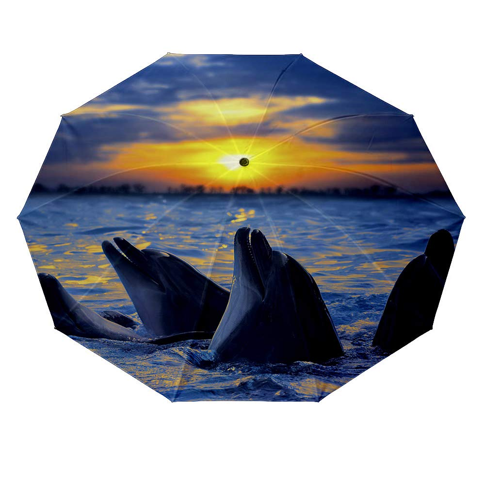 10 ribs multi-function automatic on/off - sun protection - rainproof - windproof umbrella, theme - Bottlenose dolphins basking in the sunset by BEICIHOME