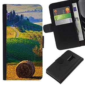 KLONGSHOP // Tirón de la caja Cartera de cuero con ranuras para tarjetas - campo paisaje italia - LG G2 D800 //
