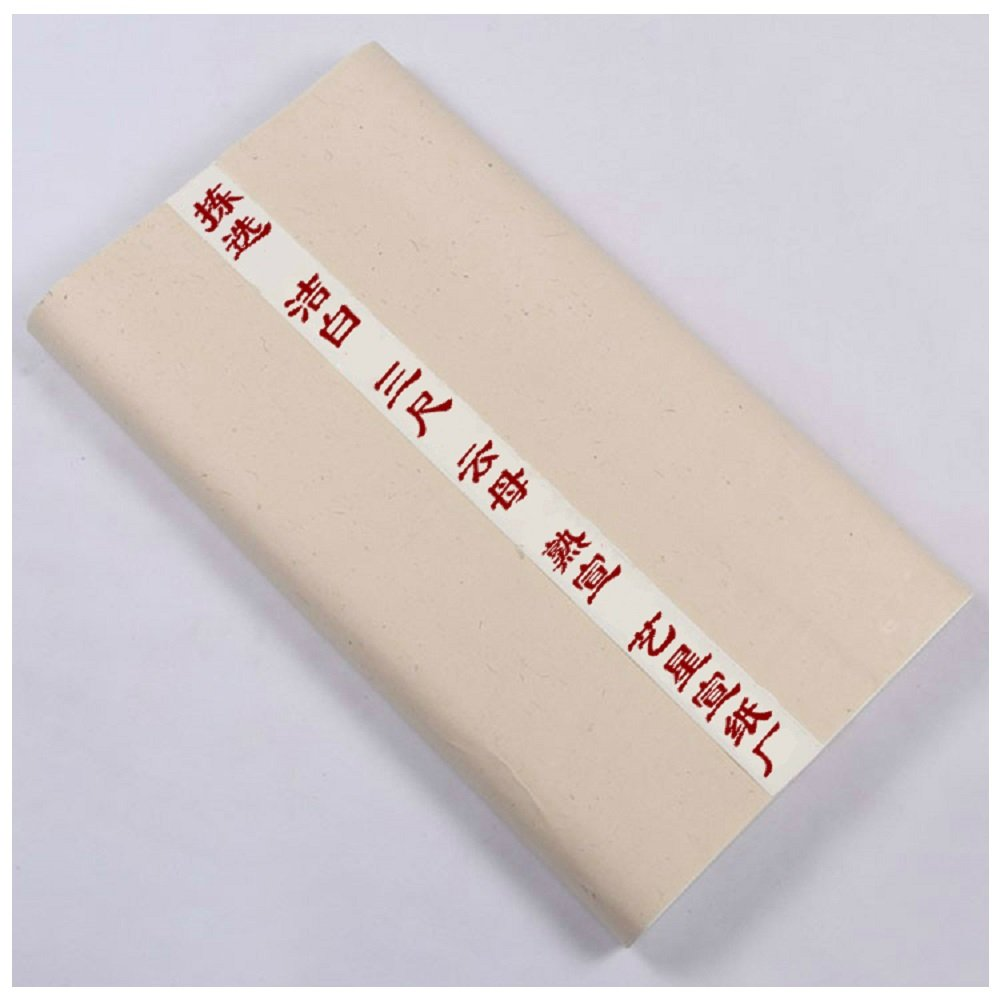 Sized Chinese Rice Paper For Painting and Calligraphy Large Pack with Mica 50 by 100 CM 100 Sheets Yi Xing