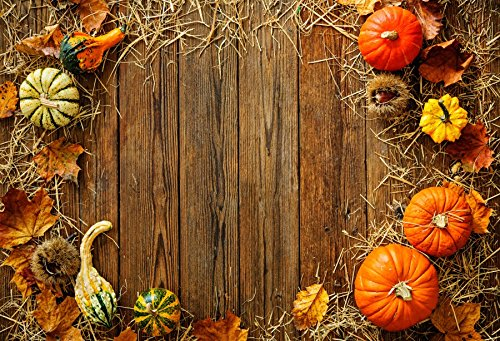 Laeacco Farm Harvest Backdrops 10x6.5ft Wooden Board with Pumpkins Maple Leaf Straw Backgroud Thanksgiving Halloween Party Autumn Festival Country Farmfield View Pohoto Portrails Artistic Studio Props ()
