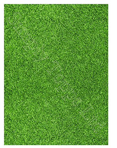 Edible Grass (Grass lawn Themed Printed Sugar Icing Sheet (approx 7.5