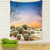 Vipsung House Decor Tapestry_Cactus Decor Cactus Balls With Spikes On A Montain Desert Sand Mexican Landscape Photo Multicolor_Wall Hanging For Bedroom Living Room Dorm