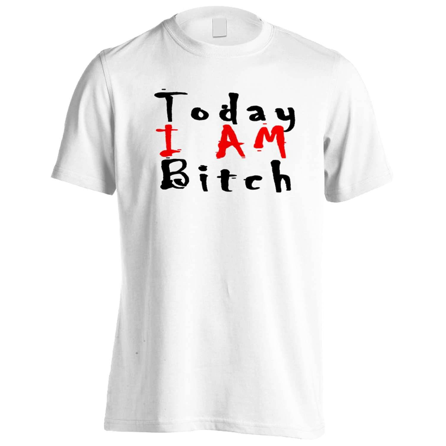 Today I AM Bitch Funny Novelty New Men's T-Shirt Tee g43m