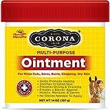 Corona Ointment 14 oz, jar