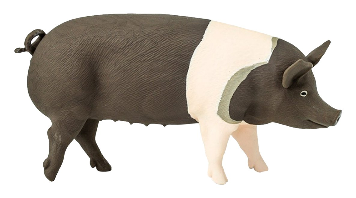 Safari Ltd. Hampshire Pig - Realistic Hand Painted Toy Figurine Model - Quality Construction from Phthalate, Lead and B01LFTKU40
