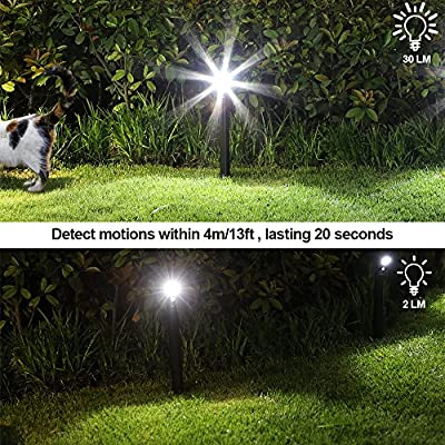 DEWENWILS 30 Lumens Outdoor Solar Path Lights with Motion Sensor, LED Pathway Lights Garden Patio Yard Driveway Walkway Landscape Lighting, Stainless Steel, 2 Pack