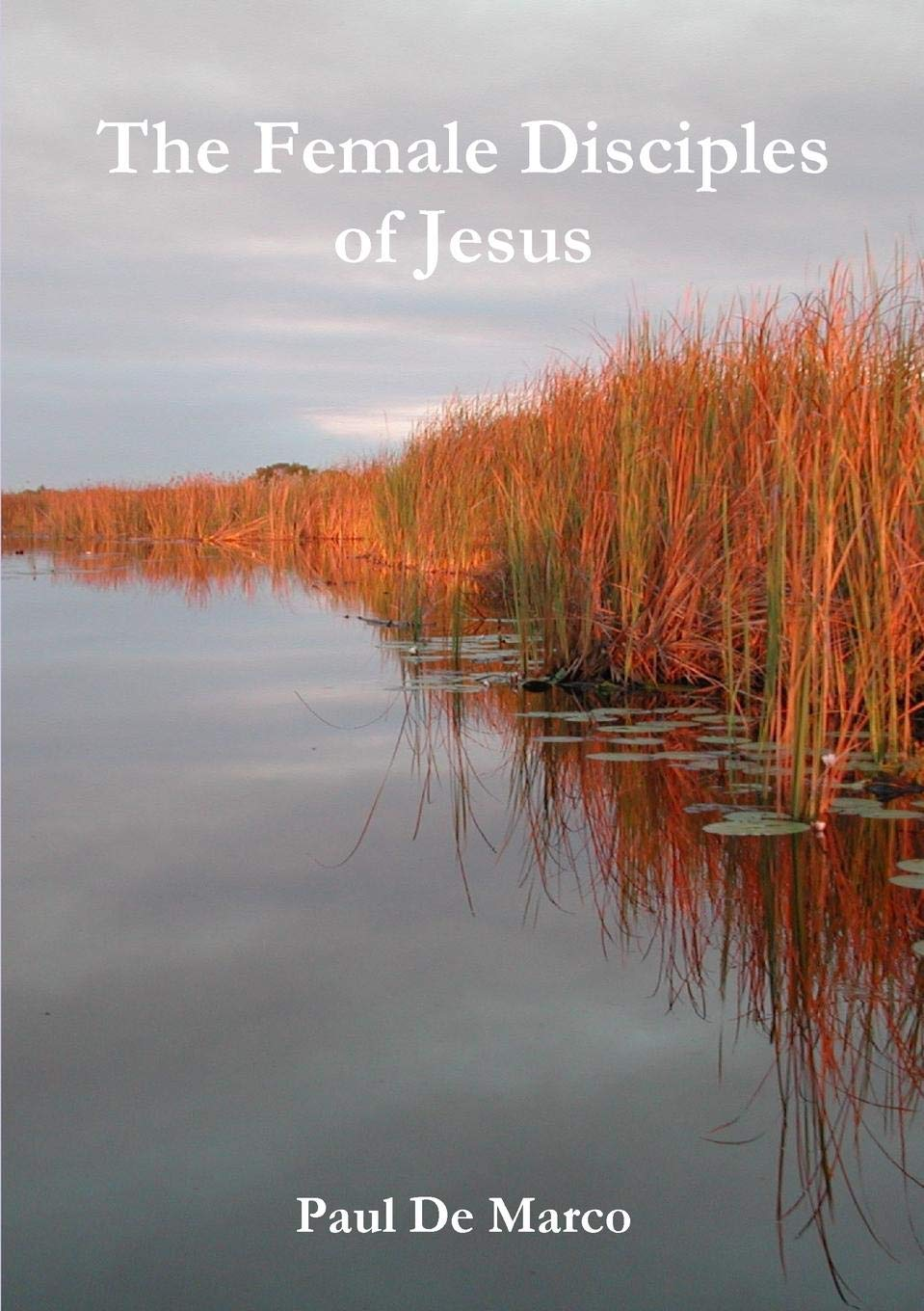 Download The Female Disciples of Jesus PDF