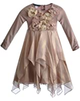 Biscotti Girl's Beautiful Shimmering Rose Special Occasion Dress